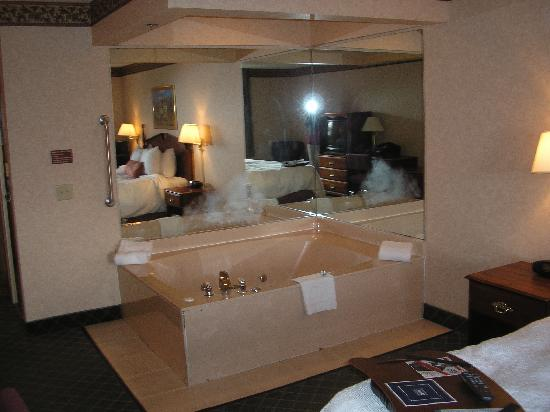 Birch Run Hotels With Jacuzzi In Room
