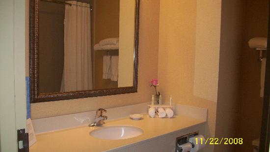 Holiday Inn Express Hotel & Suites Clearwater / US 19N: big bathroom