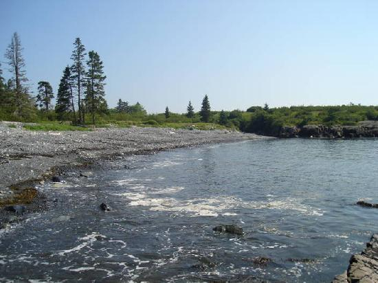 Maine: Off the beaten path at Hamilton Cove Preserve near Lubec