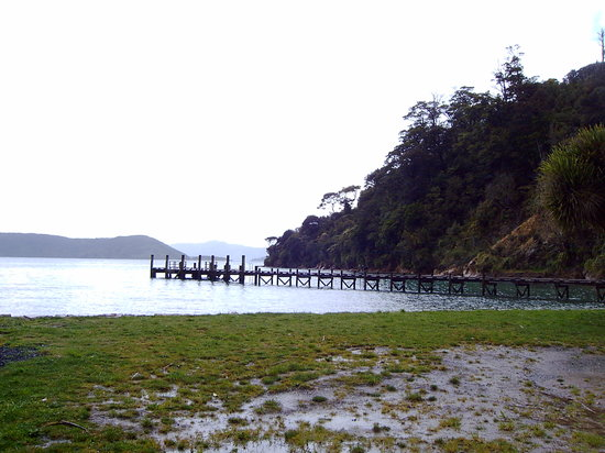 Picton, Yeni Zelanda: Ship Cove - Start of Track