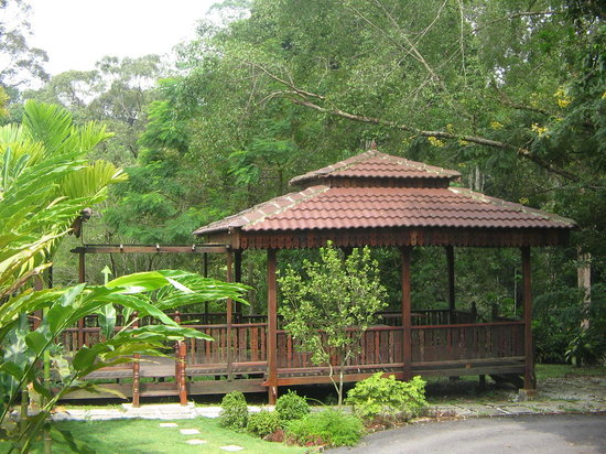 Petaling Jaya, Malesia: tea house