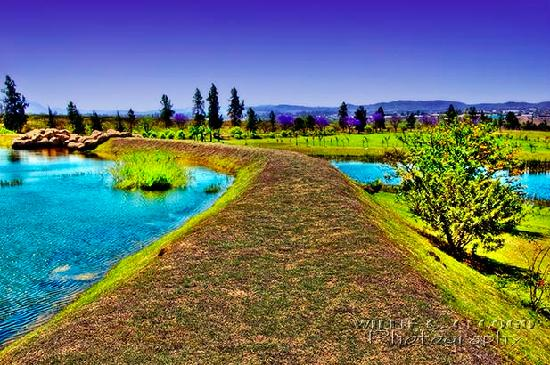 Manzini, Swaziland: The Dike that separates between the lake and the water garden.