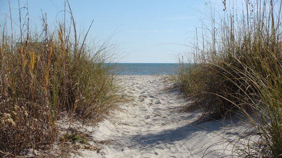 Hilton Head, Carolina Selatan: path to beach from house