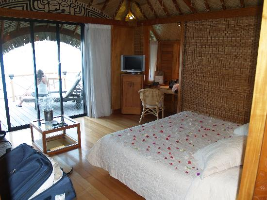 Bungalow Interior Picture Of Bora Bora Pearl Beach