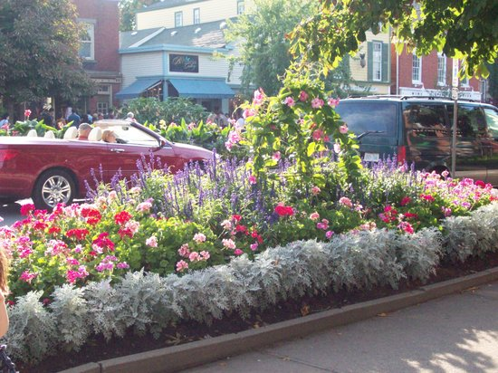 Niagara-on-the-Lake, Canad: flowers flowers and more flowers