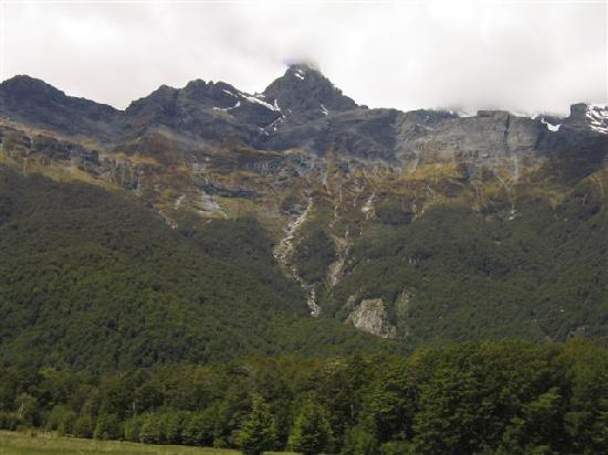 Dart River - Wilderness Jet: Looking up at part of Mt Earnslaw