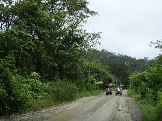 Santa Teresa, Costa Rica: We rented quads and explored the area.