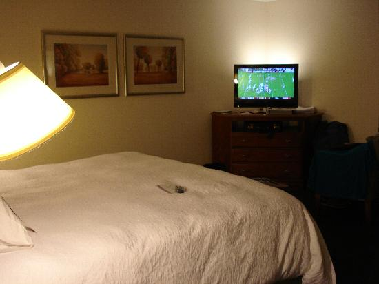 Hampton Inn Charlotte - Belmont at Montcross: Our Cool TV!