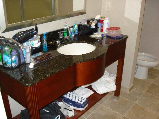Hampton Inn Charlotte - Belmont at Montcross: Bathroom Sink
