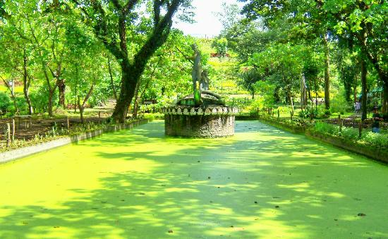 Quezon City, Philippines : Neptune Pond 