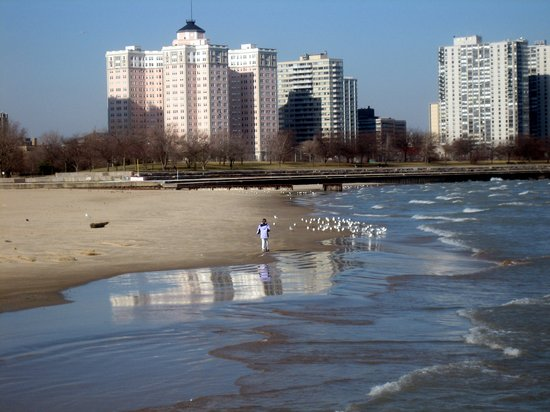 Hotels Near Foster Beach Chicago