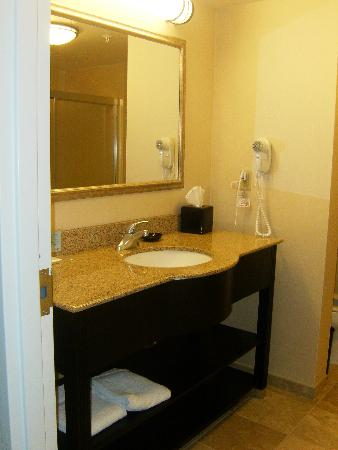 Hampton Inn Jacksonville-I-295 East/Baymeadows: Bathroom