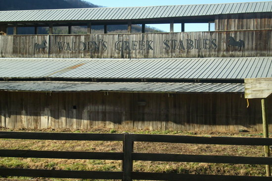 Sevierville, TN: Stables