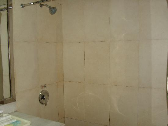 Canaan International Hotel: shower