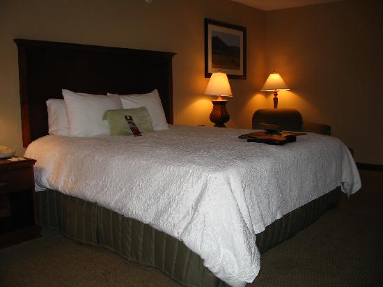 Hampton Inn & Suites Phoenix Airport South: Great Nights Sleep
