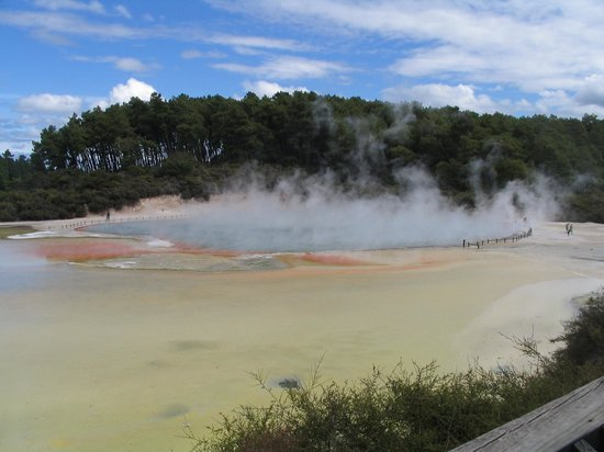 Rotorua, Nya Zeeland: Quite the Odour !