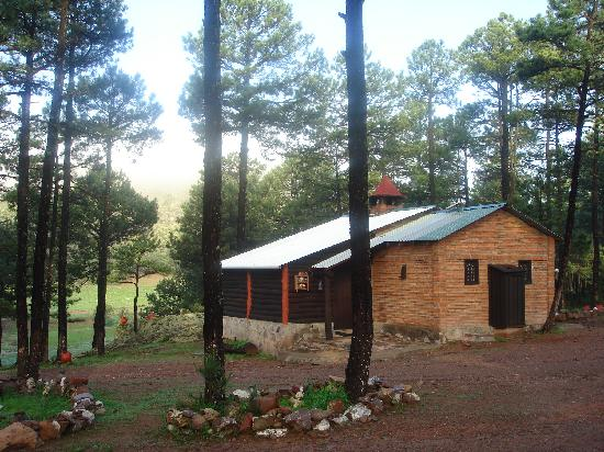 pinos altos single personals Zillow has 0 homes for sale in pinos altos nm view listing photos by analyzing information on thousands of single family homes for sale in pinos altos.