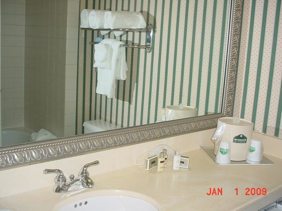 La Quinta Inn &amp; Suites Tampa North I-75: Bathroom is nice