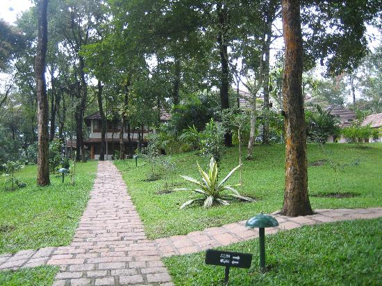 Green Woods Resort: Pathway
