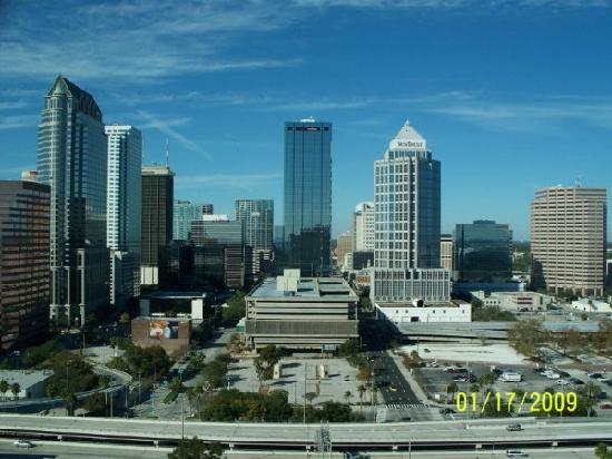 our room view picture of embassy suites tampa downtown. Black Bedroom Furniture Sets. Home Design Ideas