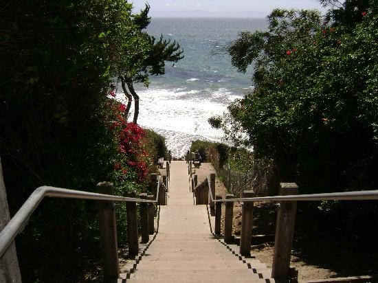 A Thousand Steps To The Beach From Mesa Lane Picture Of
