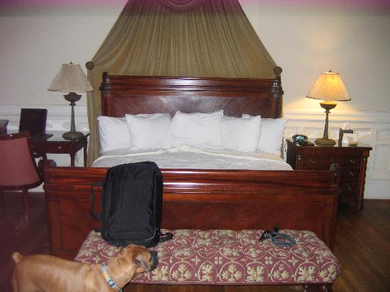 Wentworth Mansion: our dog is impressed by the suite