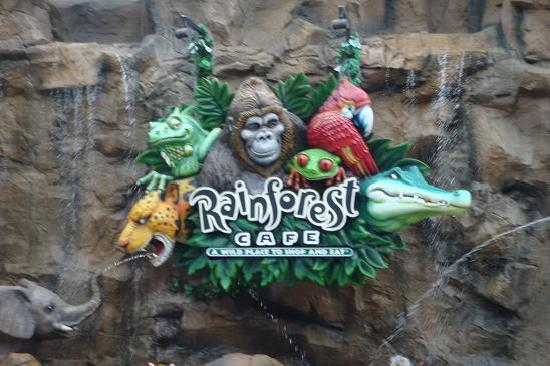 Downtown Disney Rainforest Cafe Coupons