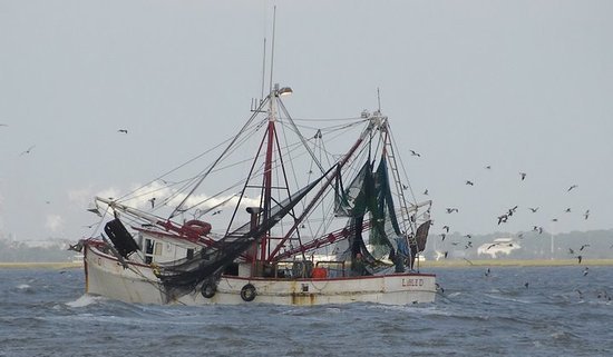 Jekyll Island, GA: shrimp boat in front of villas&#39; property