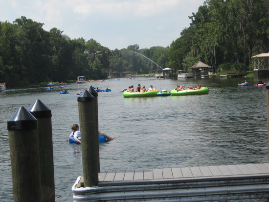 Ocala, : Lazy summer day on the Withalacuchee River