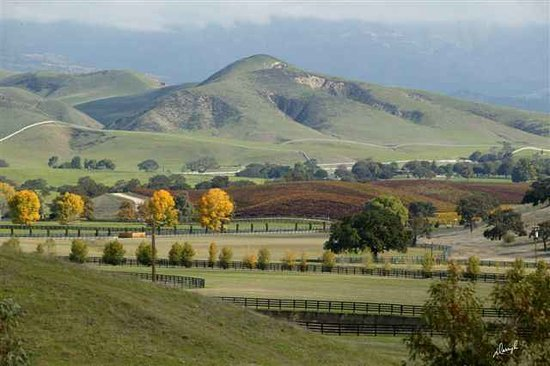The Beautiful Santa Ynez Valley in California