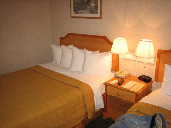 Quality Inn Artesia: Comfy queen beds with good pillows.
