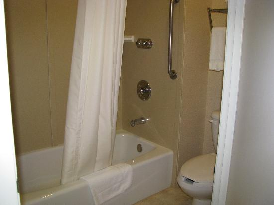BEST WESTERN Joshua Tree Hotel & Suites: neat bathroom