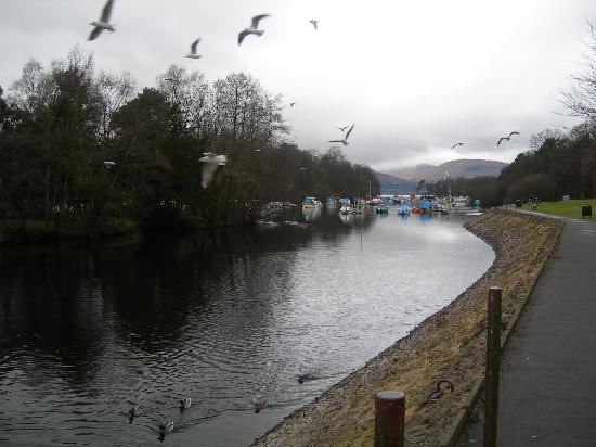 Balloch House Vintage Inn, Innkeeper's Lodge: river view