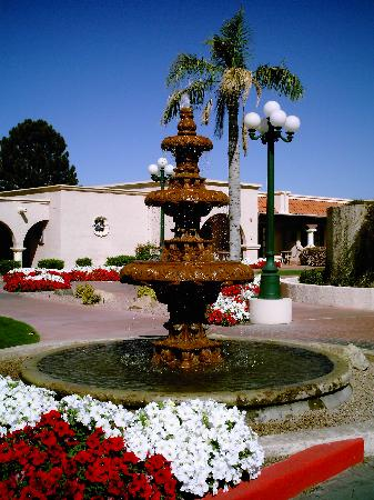 Dobson Ranch Inn and Resort: Hotel grounds