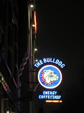 The Bulldog Hotel: view from the canal