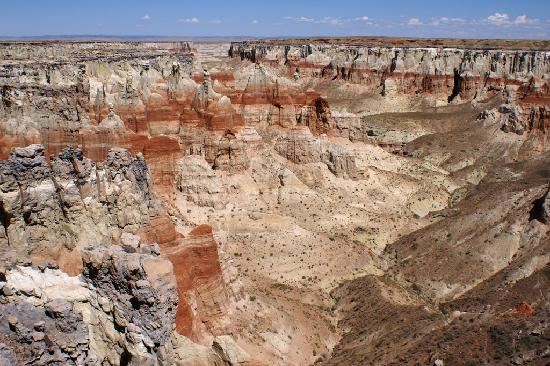Tuba City, AZ: Coal Mine Canyon