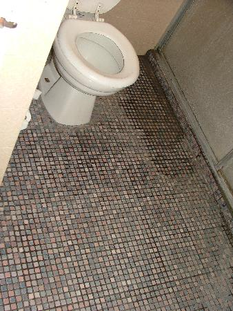 Golden Palace Hotel: Bathroom floor was uninviting
