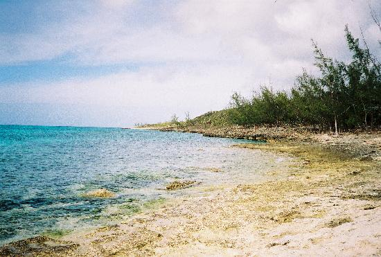 Photo of Morgan's Bonefish Harbour Eleuthera