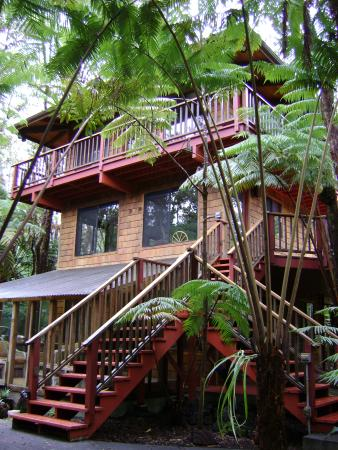 Guest Cottages at Volcano Tree House: Great escape