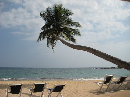 Sri Lanka: The beach outside The Chalet in Tangalle, very calm place to swim and snorkle.