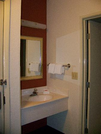 Red Roof Inn - Southpoint: Room photo - Vanity Area