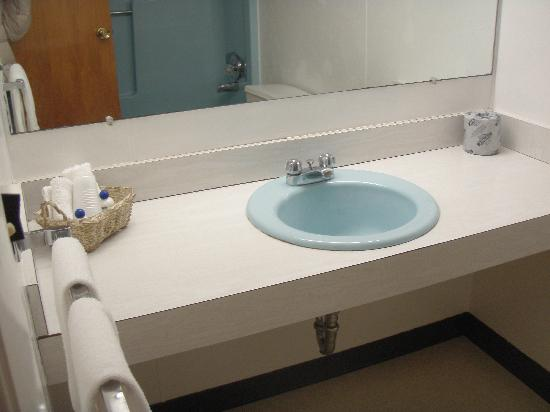 Forester Motor Lodge : Clean bathroom 