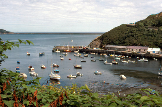 The harbour at Lower Fishguard