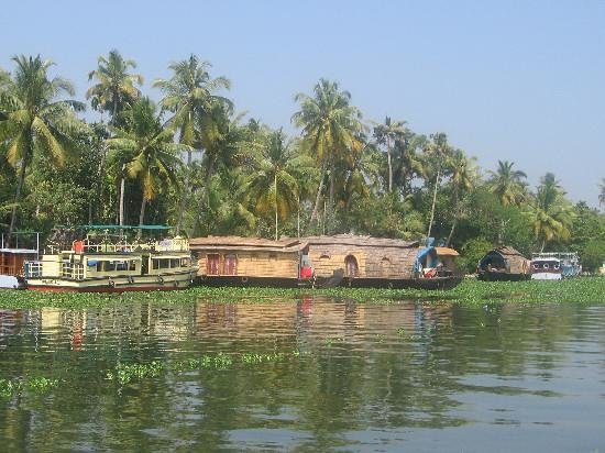 Cochin, Inde : the-backwaters 