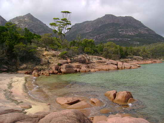 Coles Bay, : honeymoon bay