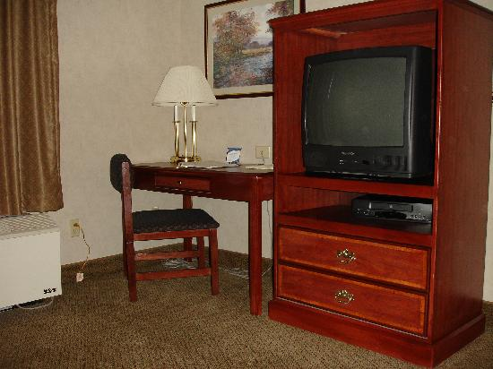 Hampton Inn & Suites Asheville Airport: Room