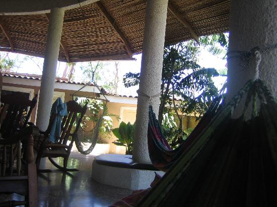 Photo of Hostel Pura Vida - Tamarindo