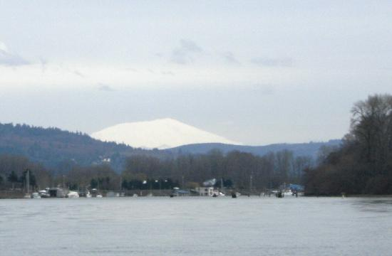 Mt st helens from the columbia river near longview wa for Rental cabins near mt st helens