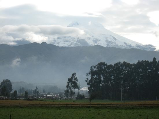 Mount Cayambe view from Shungu Huasi