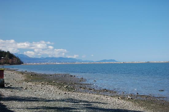 Dungeness Bay Cottages: View of the beach and Dungeness Spit